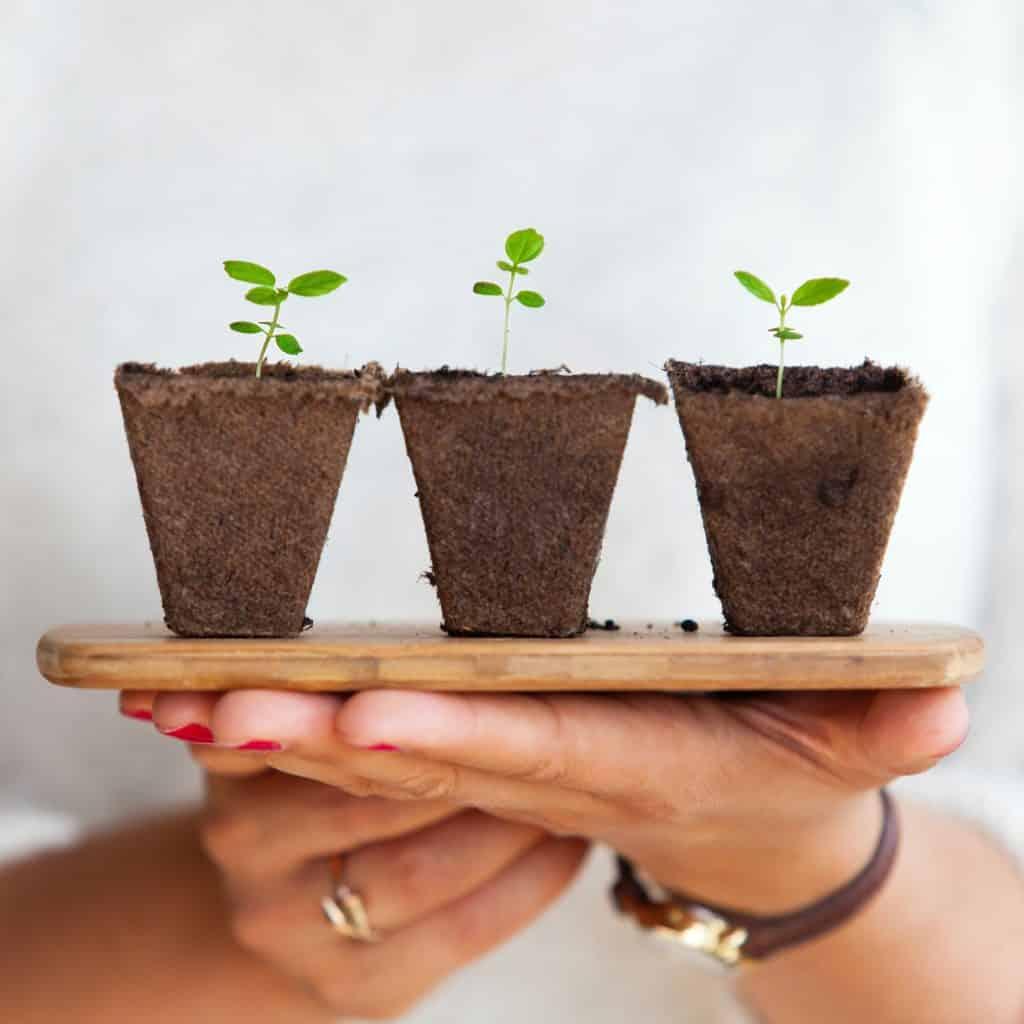 Haz crecer tus ahorros para mejorar la gestión de tu dinero