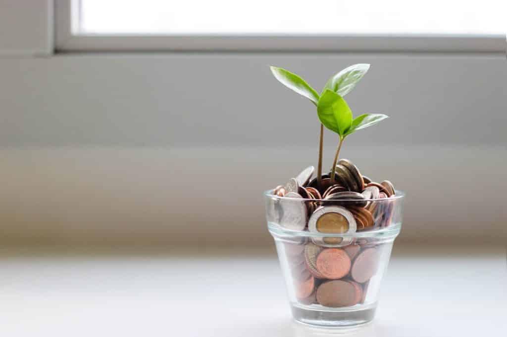 Planta que simboliza el crecimiento de los fondos indexados